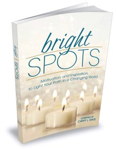 Bright Spots Book: Motivation and Inspiration to Light Your Path in a Changing World Jeff Heggie