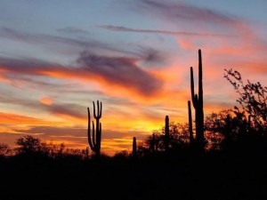Scottsdale Arizona homes with RV