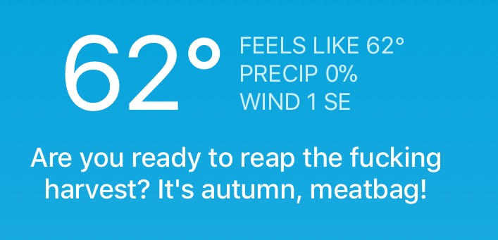 Carrot Weather Is the Best