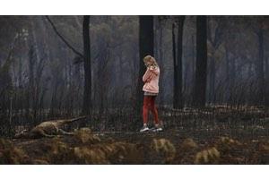 david caird - mallacoota victoria wildfires photo