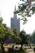 The spire of St. Patrick's through their churchyard.