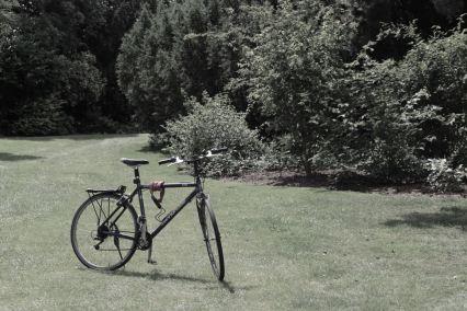 kew-gardens - 15