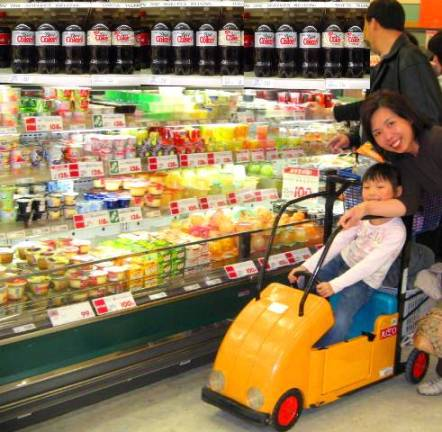 Child_shopping_cart2 Grocery Store as Minefield Child_shopping_cart2