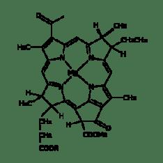 350px_Bacteriochlorophylla_mol_svg