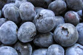 BlueBerries_Pterostilbene_Anticancer_jeffrey_Dach_MD