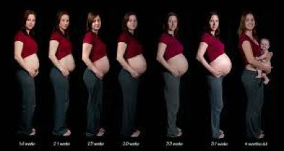 Pregnancy_confers_Protection_MS