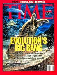 Cambrian explosion Time Magazine