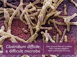 Clostriia Difficile Fecal Transplant