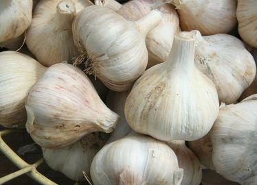 Garlic_CAlcium_Score_Basket_Wikimedia