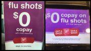 Flu Shot Only Ten Per Cent Effective
