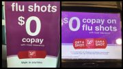 Flu Shot Only Ten Per Cent Effective