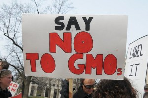 JUST Say No to GMO Protest Sign