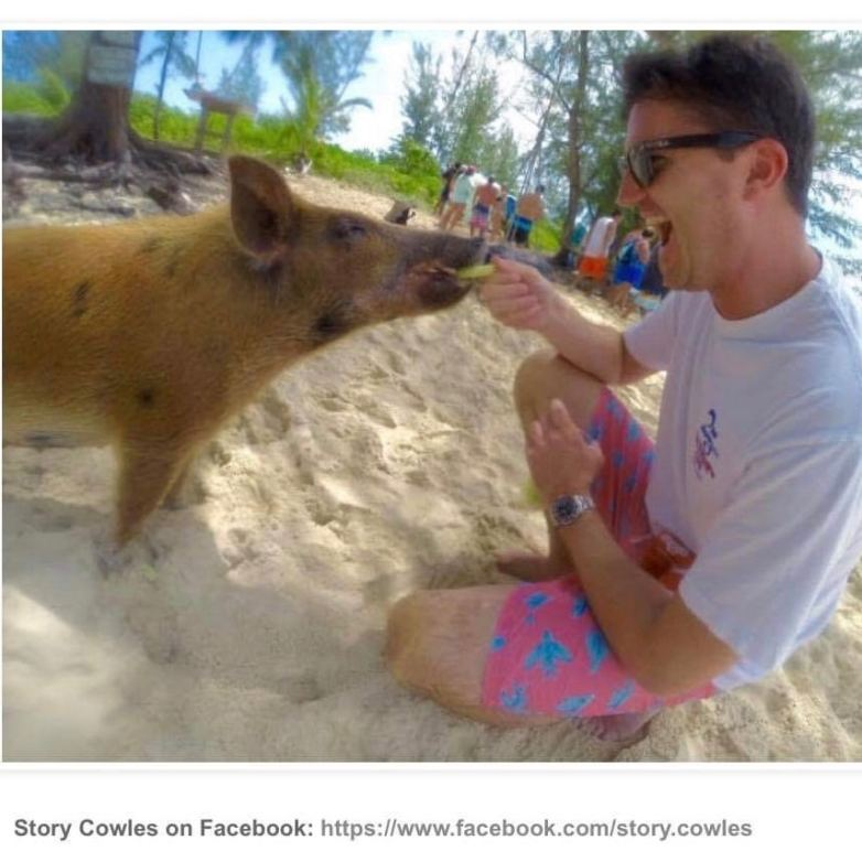 Story Cowles warthog