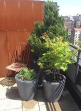 Greenwich Village Rooftop Garden