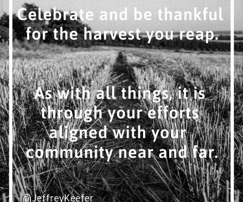 The Harvest You Reap