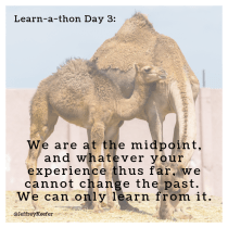 Today is Day 3 of 5, our Summer Learn-a-thon Hump Day!