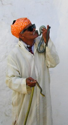 Snake Charmer kissing a snake in Morocco