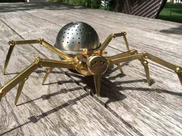 Spider head on