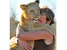 hugs 6