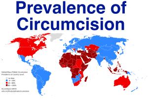 Circumcision prevalence