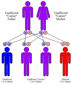 sickle-cell inheritance