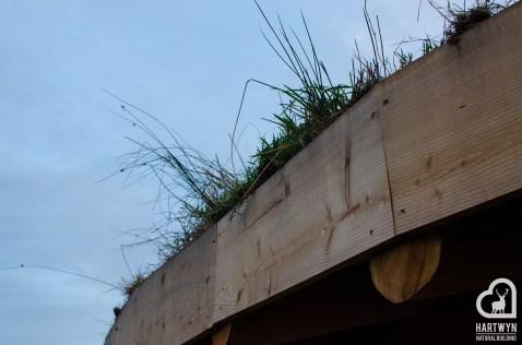 Hartwyn - Eco Roundhouse -7