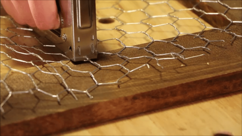 attach chicken wire