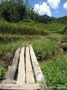 pemandangan Dusun Melati Selogiri