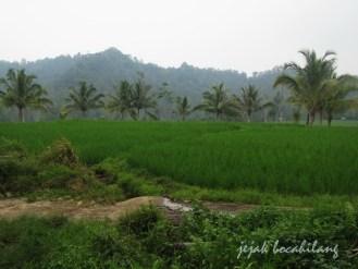 view Way Lalaan
