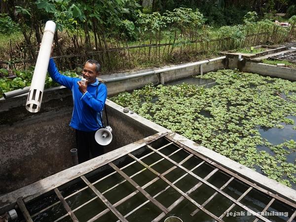 Pak Yatno petani ikan di Sumberagung Moyudan