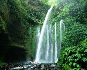 Yuk trekking di kaki Gunung Rinjani, nikmati percikan Air Terjun Sendang Gile & Tiu Kelep Lombok