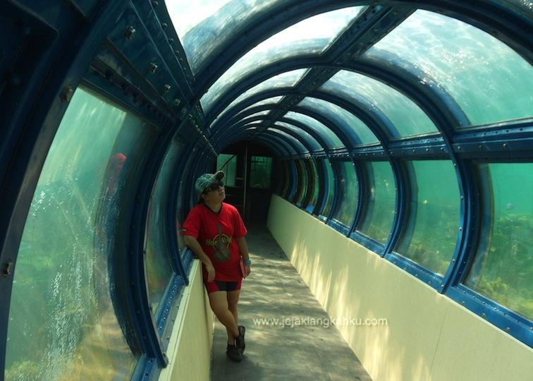 akuarium pulau putri 4-1
