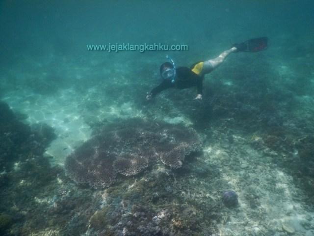 underwater gili trawangan 2-1