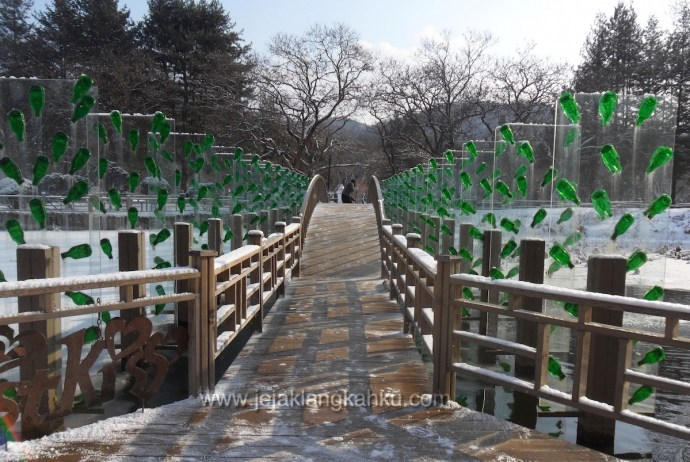 nami island south korea 11