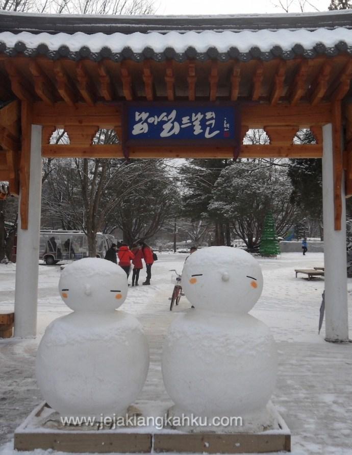 nami island south korea 4