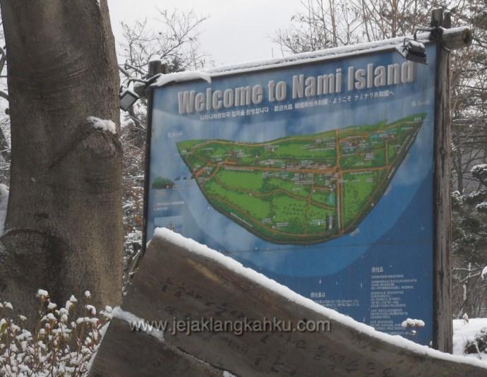 nami island south korea 9
