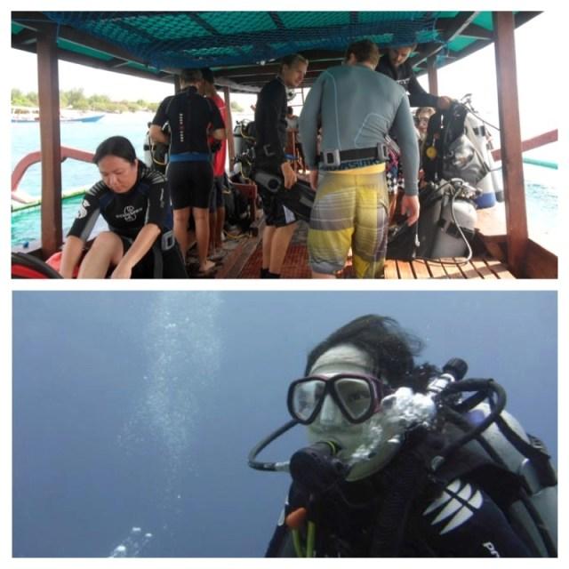 diving sea snake lombok 4