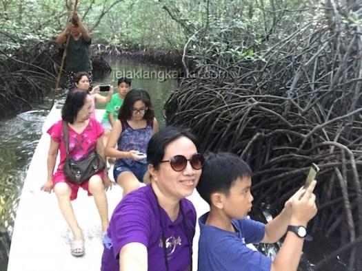 mangrove forest nusa lembongan 3