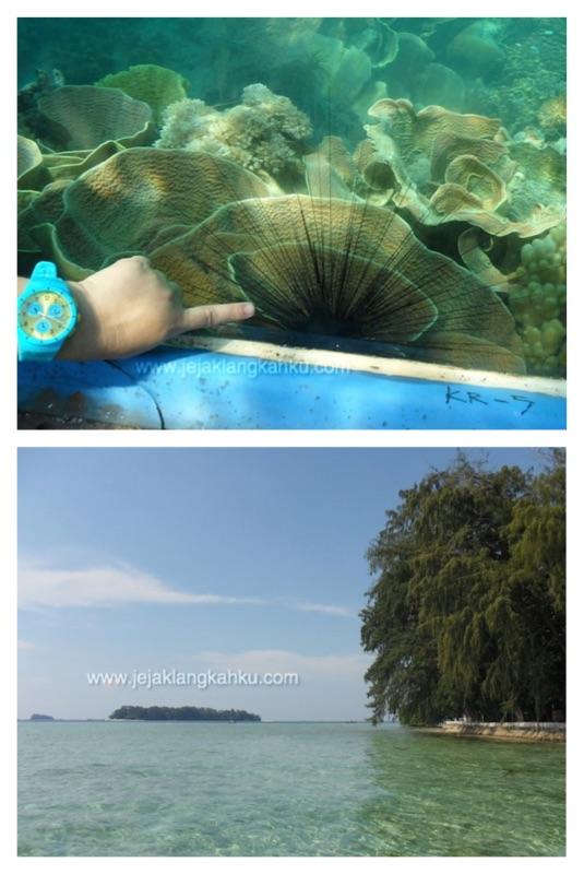 pulau putri kepulauan seribu d