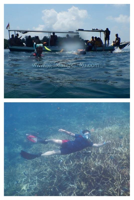 snorkeling pulau putri b