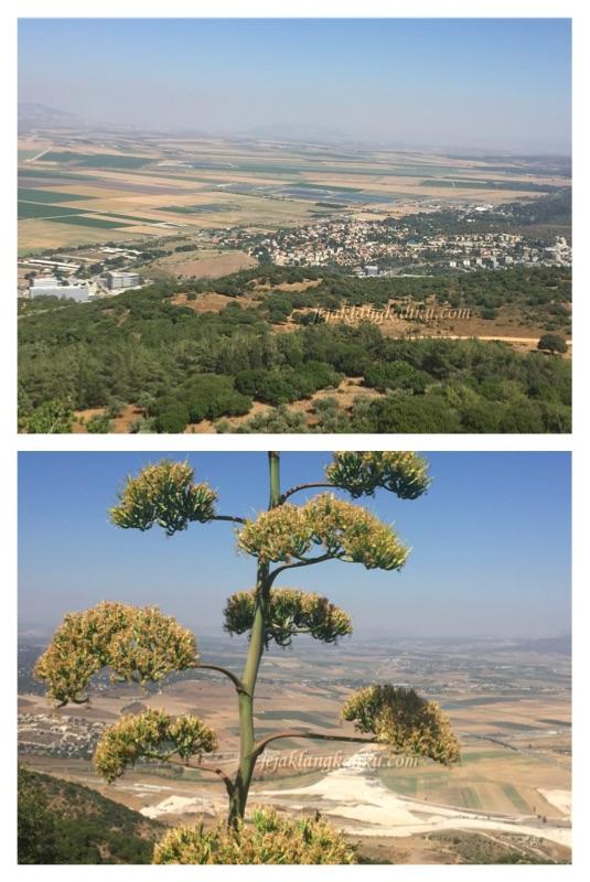 gunung-karmel-israel-3