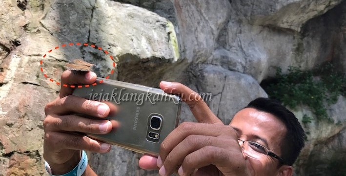 Dan Kupu-Kupu yang Lucu itu Hinggap di tangannya, di Entopia – Penang Malaysia
