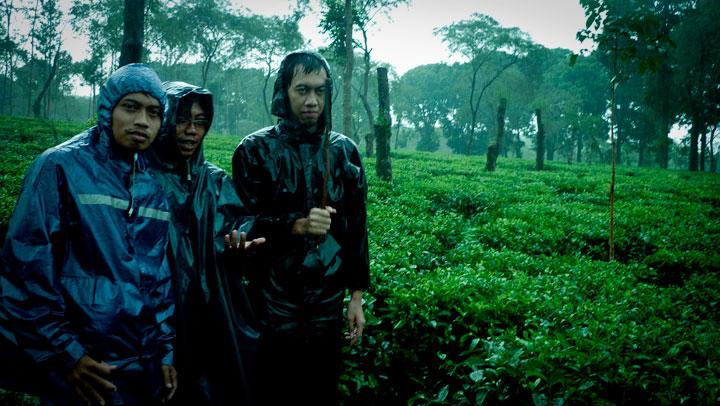 berhujan-hujanan di kebun teh