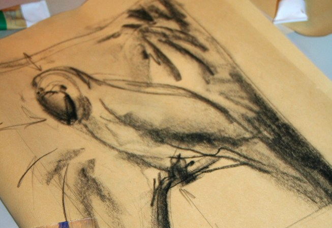 Art Lessons Palm Coast Florida