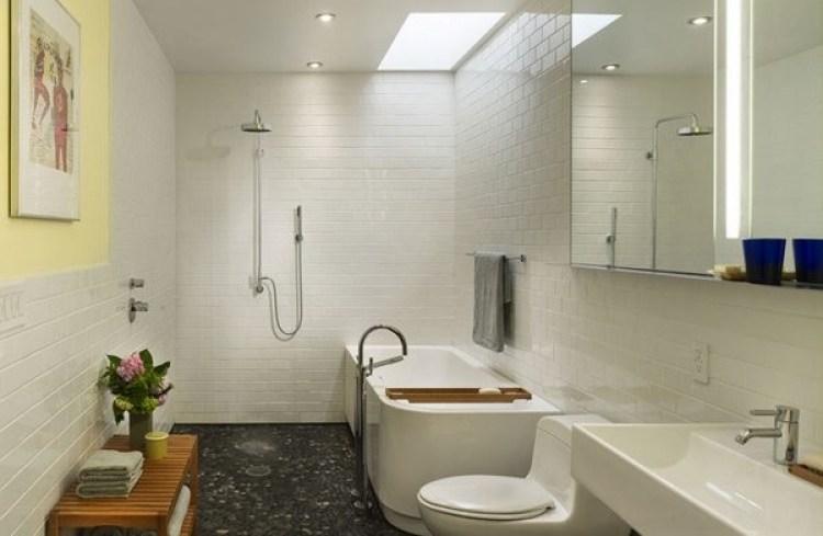 Basement Bathroom Ideas - Bath Tub under the Skylight