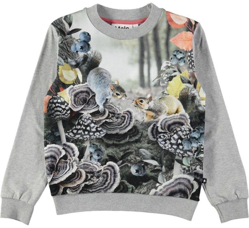 Regine Forest Squirrels Top-JUMPER-MOLO-104 - 4 yrs-jellyfishkids.com.cy