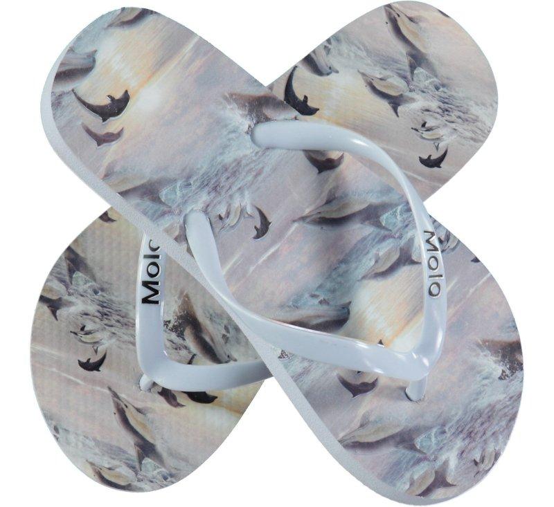 Zeppo Flip Flops - Dolphin Sunset-Flip flops-Molo-23/24-jellyfishkids.com.cy