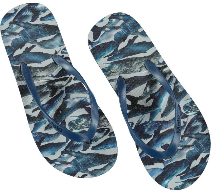 Zeppo Flip Flops - Whales-Flip flops-Molo-25/26-jellyfishkids.com.cy