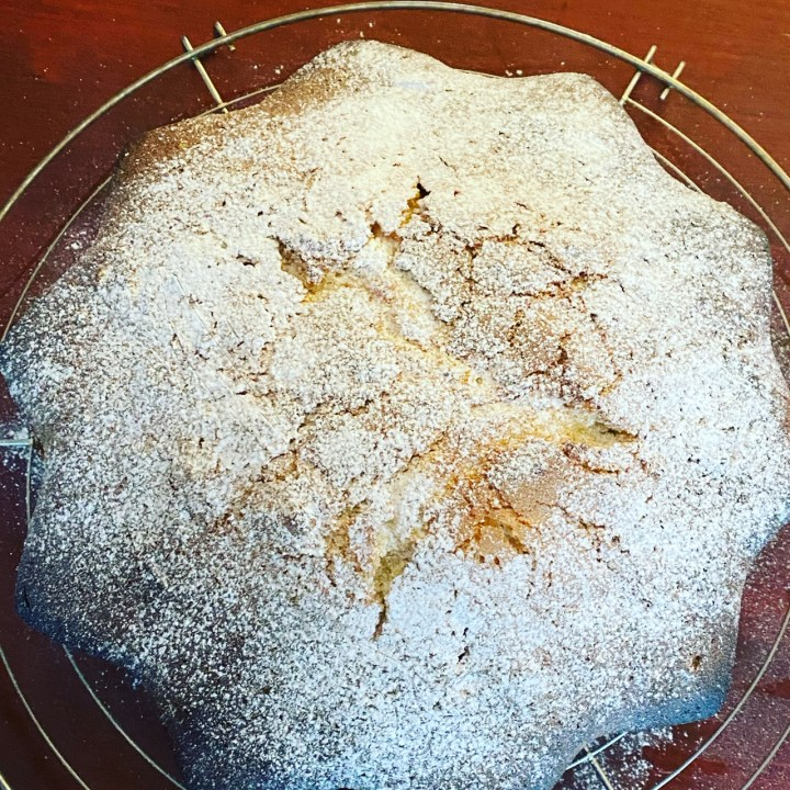 Babka gâteau cake Themomix