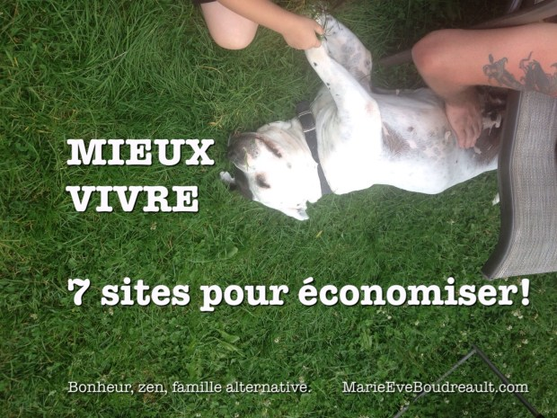frugalite ecoresponsabilite 7 sites pour economiser